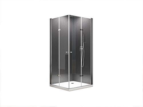 BuyLando.Shop [Typ-Caroline] Eck-Duschkabine - Dusche - ESG - Variationen (100x90x195cm)