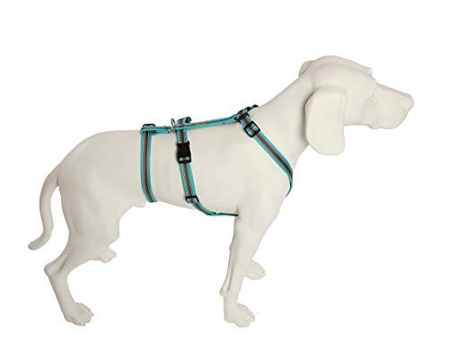 Feltmann No Exit ausbruchsicheres Hundegeschirr für Angsthund, Sicherheitsgeschirr für Pflegehunde, Panikgeschirr, Soft Grip, türkis/braun, Bauchumfang 55-75 cm, 20 mm Bandbreite