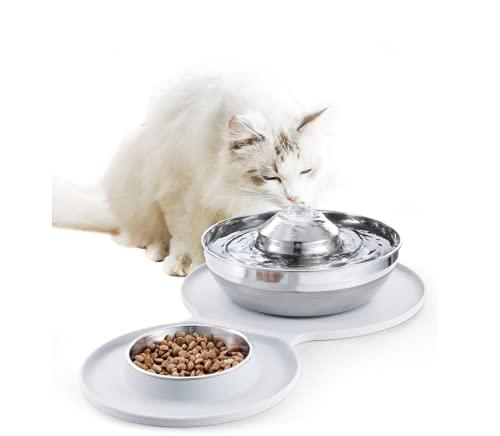 Katzenbrunnen aus Edelstahl, Pet Doppelschüssel, 2L/67oz Trinkbrunnen für Katzen und Hunde, Super Leise und Automatischer Wasserspender und Futternapf Pet Bowl mit Silikon Unterlage, Spülmaschinenfest