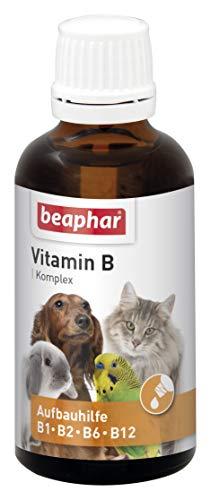 Vitamin-B-Komplex   B-Vitamine für Hunde, Katzen, Nager, Vögel   Zur Fellpflege von Haus-Tieren   Für ein gutes Wohlbefinden   Vitamin-Tropfen 50 ml