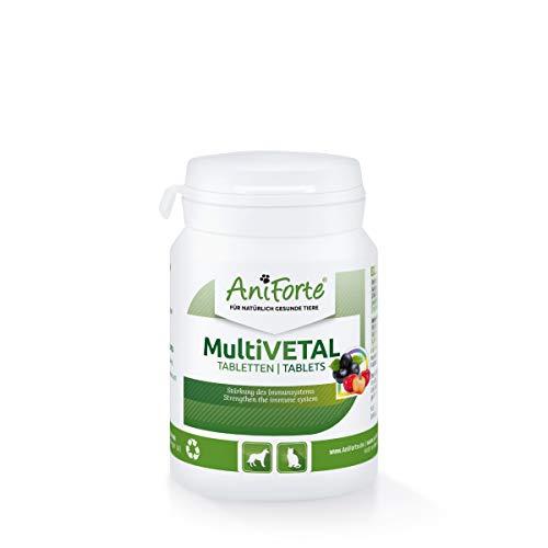 AniForte MultiVETAL Multivitamin für Hunde & Katzen 100 Tabletten - Vitamin b für Hunde, Vitamin b komplex Hund, Vitamine Hund, Hund Vitamine, Hunde Vitamine, Vitamin b Hund, immunsystem Hund