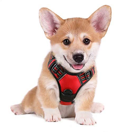 rabbitgoo No-Pull Hundegeschirr atmungsaktiv Brustgeschirr Hundevest für Mittle Große Hunde Welpengeschirr Reflexstreifen Sichere Einstellbar Weich Rot S