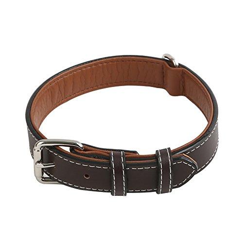 Vivifying Hundehalsband aus Leder, Verstellbar von 36,3 cm bis 46,5 cm Halsband aus Echtem Leder für Große, Mittlere und Kleine Hunde (Dunkelbraun)