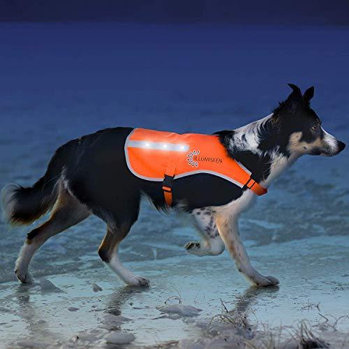 Illumiseen Reflektierende LED Hunde-Warnweste