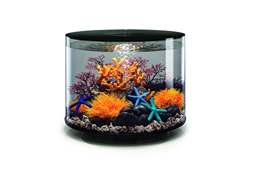 Oase biOrb TUBE 35 LED Aquarium, 35 Liter - Aquarien Komplett-Set mit LED Beleuchtung und patentiertem Filter-System, Acryl-Becken