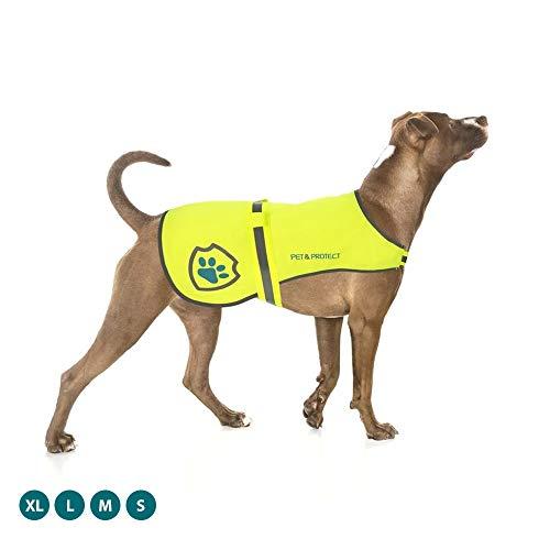 Premium-Hundeweste, reflektierend, hohe Sichtbarkeit, Sicherheitsweste, Laufen, Joggen, Training, 7 kg - 59 kg