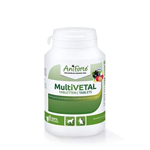 AniForte MultiVETAL für Hunde, Katzen 250 Tabletten - Vitamin b12 Hund, Vitamin b komplex für Hund, vitamintabletten Hund, Vitamin b12 für Hunde, Hund immunsystem stärken, Hunde Vitamine tabletten