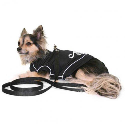 theo Hundesoftgeschirr mit Leine schwarz mit Reflektorstreifen L