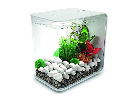 Oase biOrb FLOW 30 LED Aquarium, 30 Liter - Aquarien Komplett-Set mit LED Beleuchtung und patentiertem Filter-System, Acryl-Becken