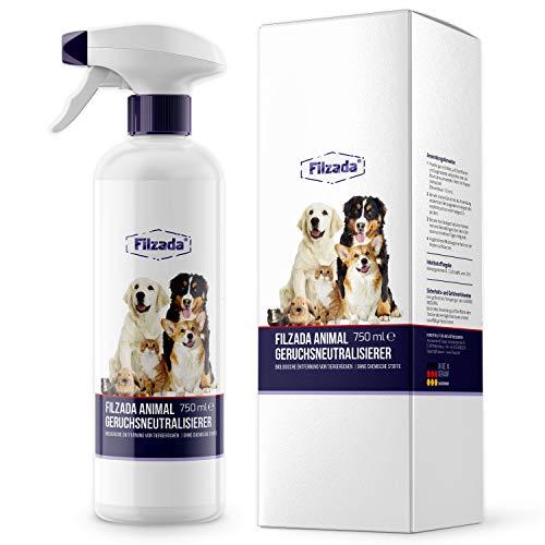 Filzada Animal - Tier Geruchsentferner/Geruchsneutralisierer - Idealer Geruchskiller Für Katzenurin und Tiergerüche