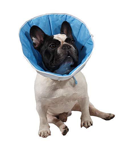 Post-operativen Kragen für Hund, Katze oder Kaninchen.