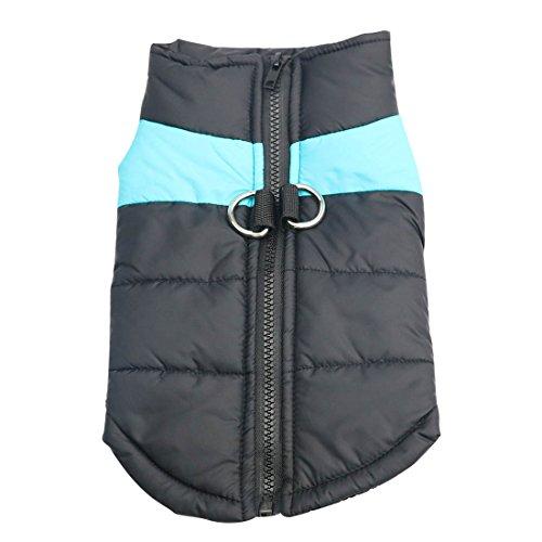Idepet Haustier Hund Warm Mantel Jacke Wasserdichte Kleidung Kleine mittlere große Haustier Hund Katze Bekleidung Bekleidung Frühling Herbst Winter- (S, Blau)