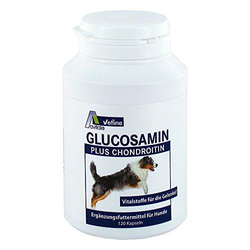 Glucosamin+chondroitin Ka 120 stk