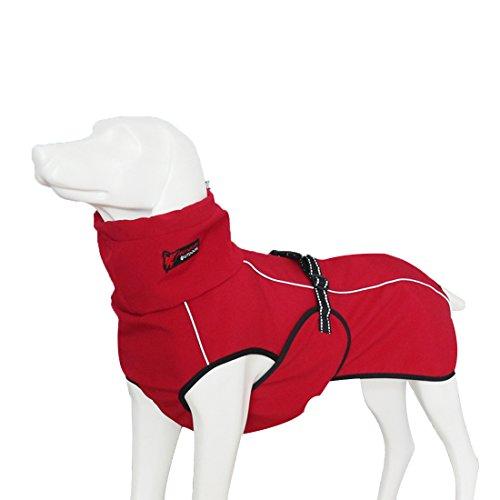 GWELL Hund Hundejacke Wasserdicht Fleece gefüttert Regenjacke Winterjacke Funktion Weste mit D-Ringe Gurt für Mittelgroßen Großen Hund Winter Herbst Frühling Rot XS