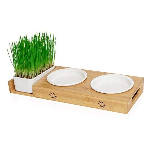 Pfotenolymp® Futterstation mit Katzengras für Katzen - Katzennapf / Futternapf aus Porzellan - erhöhtes Napf-Set mit Katzengrasschale - Fressnapf hoch