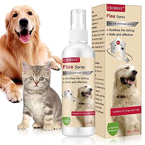 Juckreiz Spray für Haustiere,Floh Zeckenspray,Zeckenspray für Hund,Zeckenspray für Katze,Anti Floh Spray,Flea Spray,Flohbekämpfung Katze,Natürliches Anti-Floh-Spray für Hundekatzen