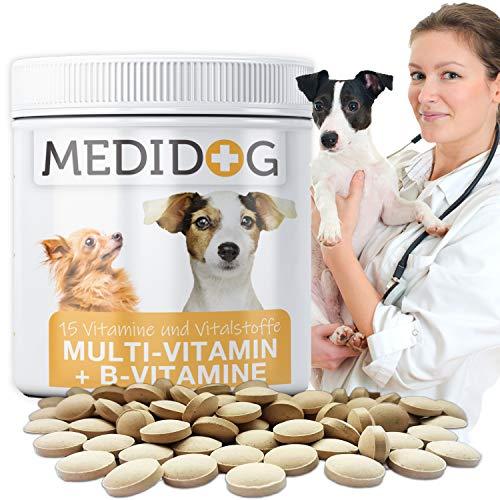 Medidog Vitamin B Komplex für Hunde 130g, Mit Multivitamin-Formel Haut +Fell Biotin, Folsäure, Inositol, Cholin, Pantothensäure, 130g