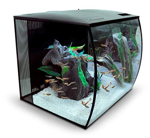 Fluval Flex Aquarium 57L, Süßwasser Aquarium, schwarz