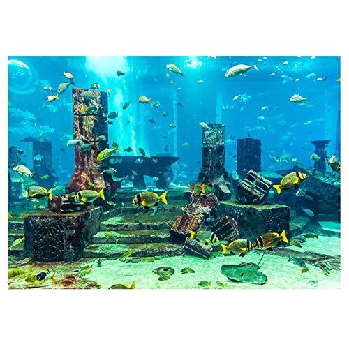 Cafopgrill Aquarium Hintergrund Poster, Aquarium-Hintergrund PVC Korallen Aquarium Hintergrund Unterwasser Poster Aquarium Wanddekorationen Aufkleber (61 x 41 cm)