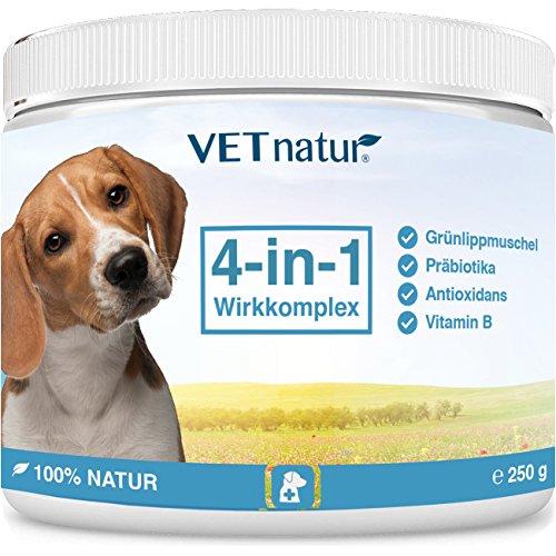 VETnatur 4in1 Grünlippmuschel-Pulver für Hunde mit Wirkungssteigerung durch Antioxidans + Präbiotika + Vitamin B + Zink/Eisen | 100% Natur | Hergestellt in Deutschland (250 g)