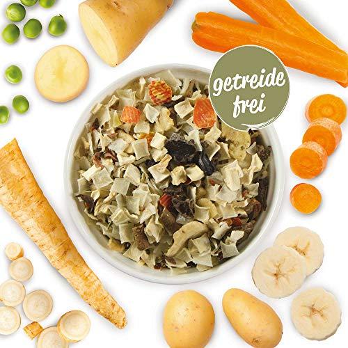 Schecker Veggi Kartoffel Gemüse Mix 1 kg mit Bananen und Petersilie Getreidefreies, glutenfreies Müsli auf Basis von Obst und Gemüse