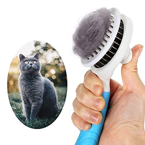 GOOIN Katzenbürste Selbstreinigend Zupfbürste entfernt Unterwolle Hundebürste Hundebürste Katzenbürste Kurz bis Langhaar Geeignet Sanfte Katzenbürste Zupfbürste