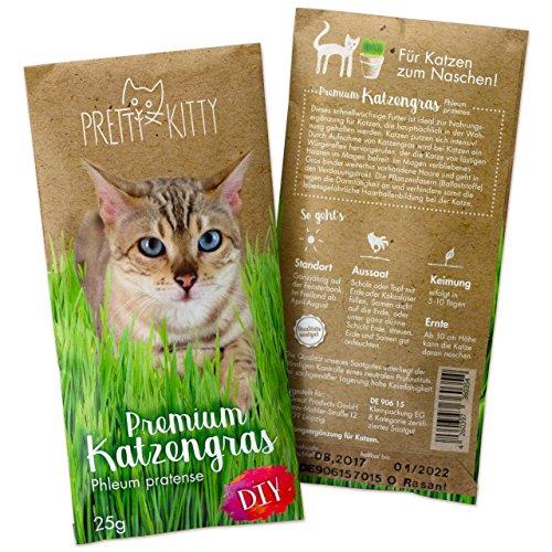 PRETTY KITTY Premium Katzengras Samen: 1 Beutel mit 25g Saatmischung für 10 Töpfe fertiges Katzengras zum Naschen – eine grüne Katzen Wiese mit 1x25g Katzengrassamen, Katzen Geschenk – Pflanzen Samen